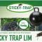 Sticky Trap fælde